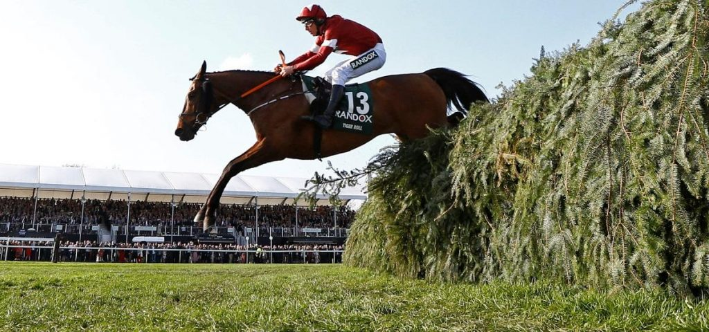 Tiger Roll eases to National victory