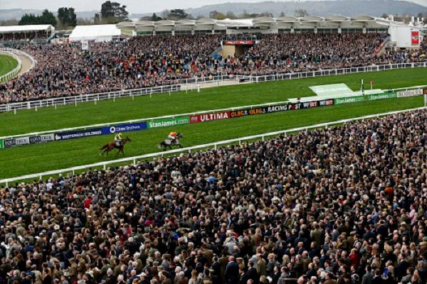 Richards guarded on Simply Ned's Cheltenham chances