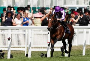Kew Gardens lined up for Irish St Leger