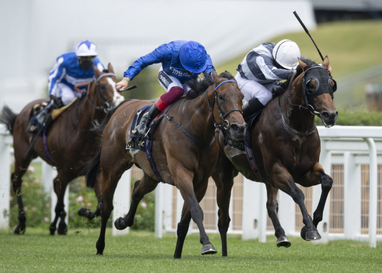 Circus Maximus (right) is likely to be one of three runners for Aidan O'Brien in the Sussex Stakes