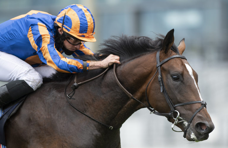 Battleground is bound for the Vintage Stakes