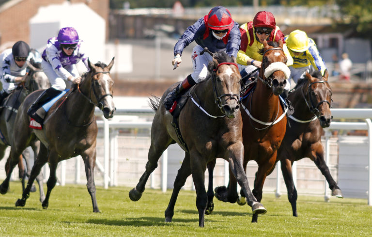 Steel Bull looked a smart colt in the making at Goodwood