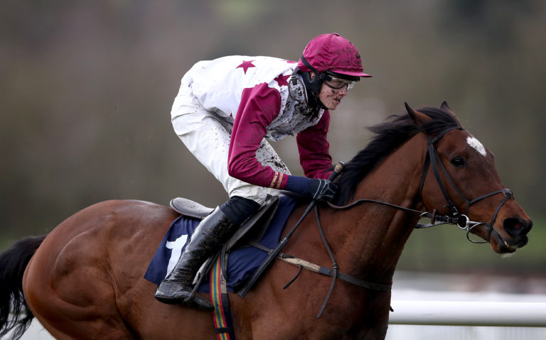 Main Fact looks to have his work cut out in the Stayers' Hurdle