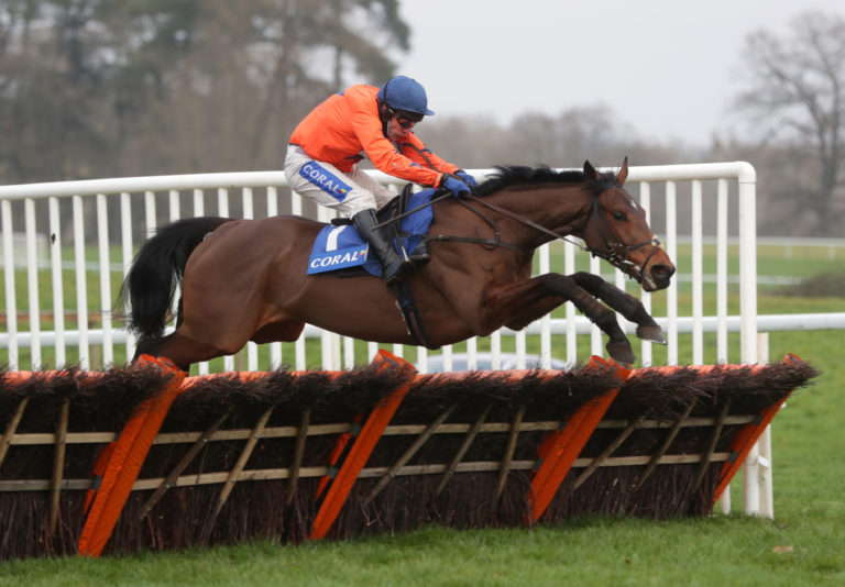 Adagio has been a star for David Pipe this season