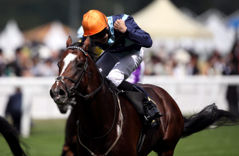 Accidental Agent loves the straight mile at Ascot