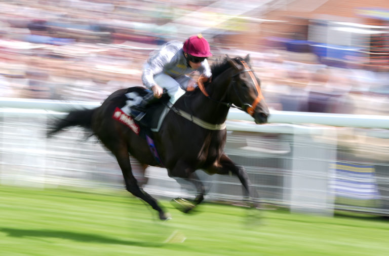 Armor winning the Molecomb Stakes at Goodwood